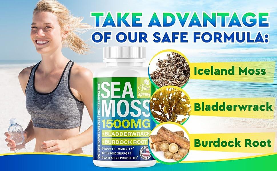 sea moss