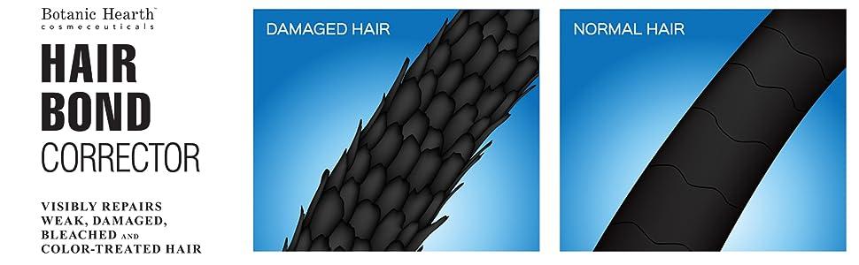 مصفف الشعر النباتية بوند olaplex على معالجتها التالفة جافة العضوية الطبيعية أفضل