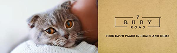 Best Cat Scratcher