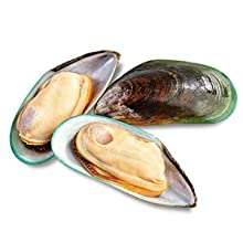 Green Lipped Mussel