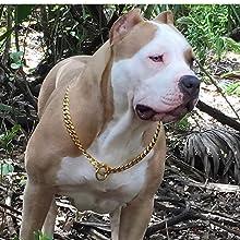 3keys Gold Choke chain cuban link gold brass