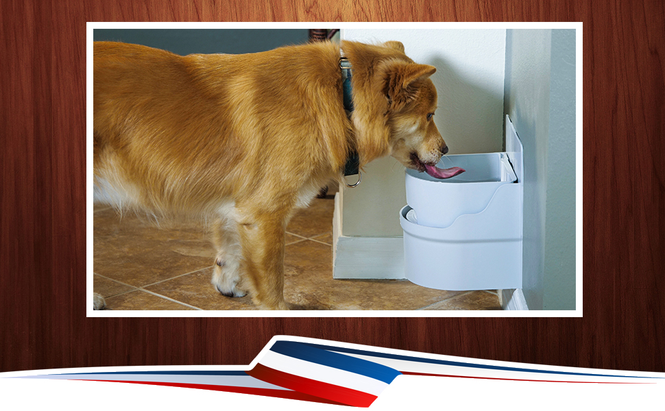automatic dog waterer, automatic dog water bowl, dog water fountain