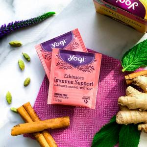 yogi echinacea immune support iced tea