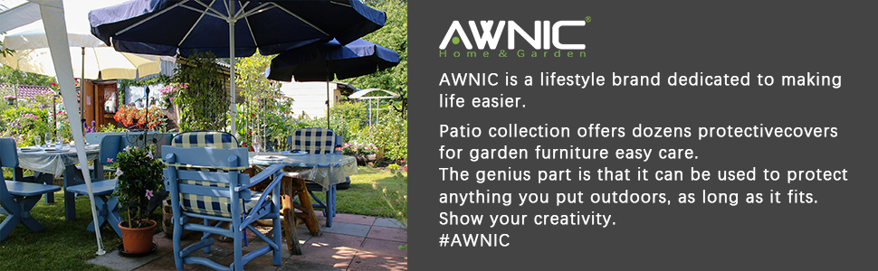AWNIC cover