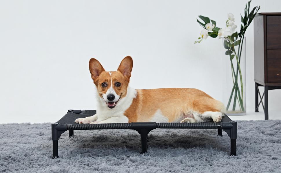 Indoor Elevated Dog Bed