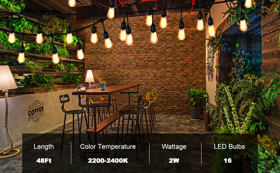 48FT Waterproof Commercial String Light