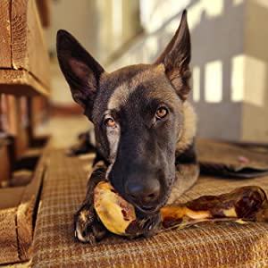 dog treat bone healthy bone prosciutto protein