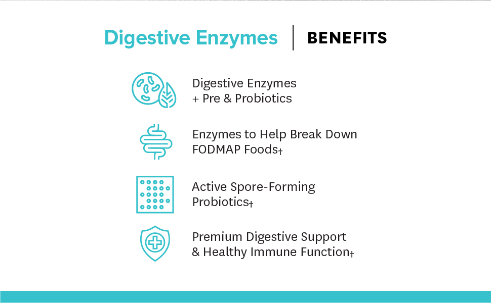 Premium Digestive Support & Health Immune Function