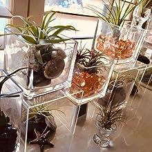 planter terrarium bamboo arrangement floral display centerpiece home decoration modern vase gift
