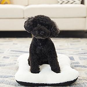 dog bed small dog