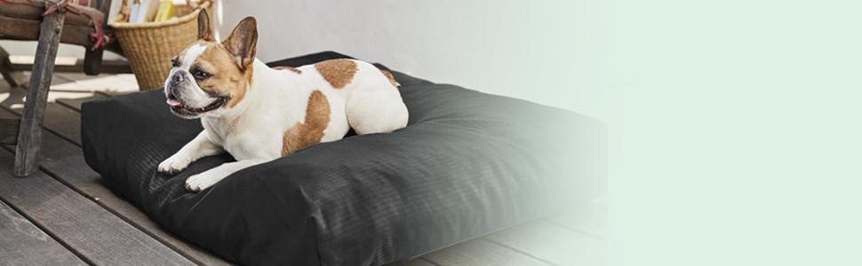 French bulldog on K9 Ballistics Tough Rectangle Dog Bed
