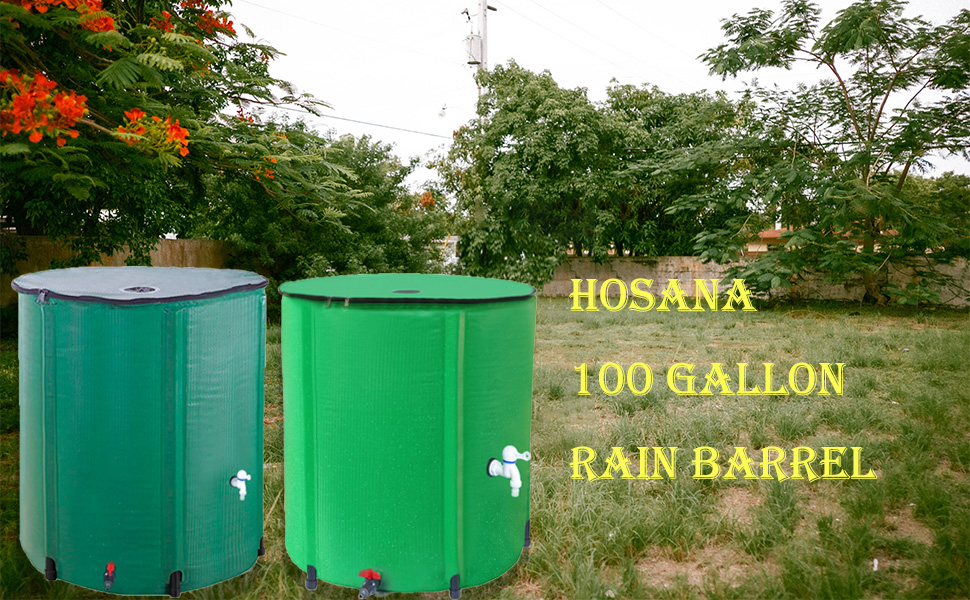 rain barrels to collect rainwater