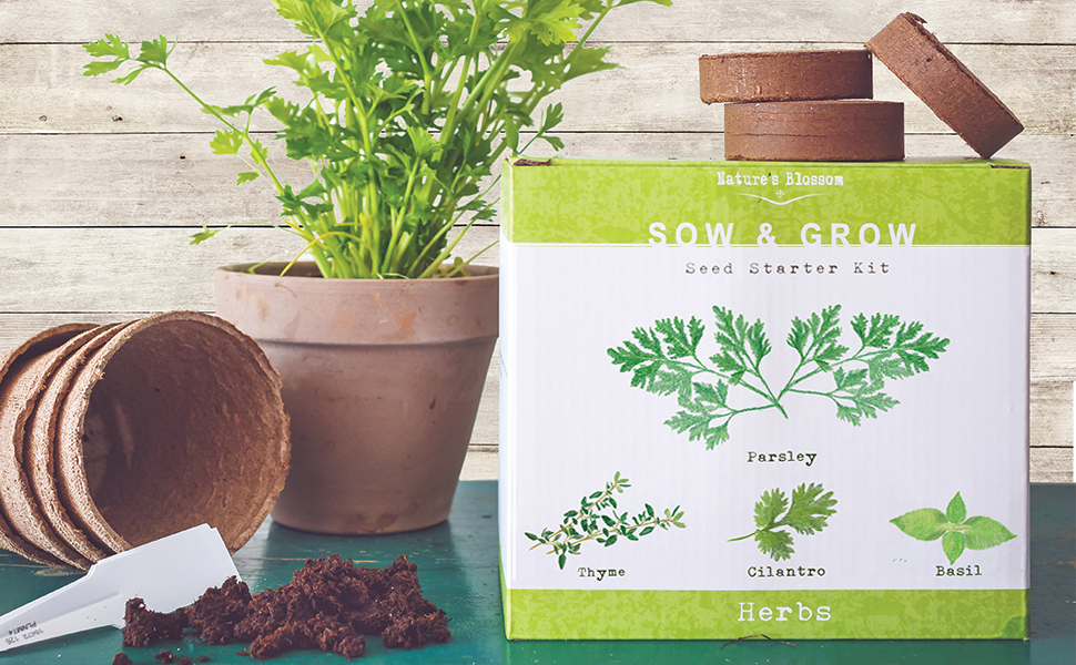 Natures Blossom Herb Garden Seed Starter Kit. Grow 4 Herbs from Organic Seeds - Basil, Cilantro, Parsley, Thyme. A Complete Beginner Gardeners ...