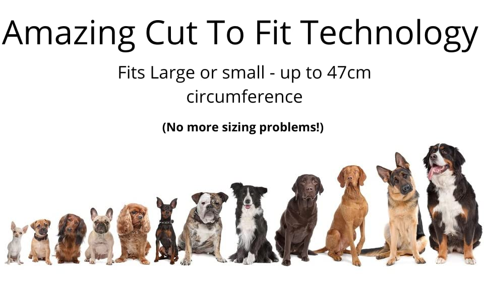 Cut to Fit Size Atlecko LED Dog Collar