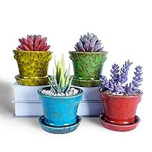 4.2 Inch Succulent Pots