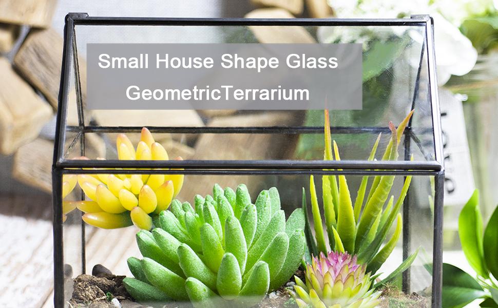 Small House Shape Glass Terrarium
