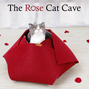 cat house2