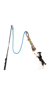 flirt pole toy for dogs