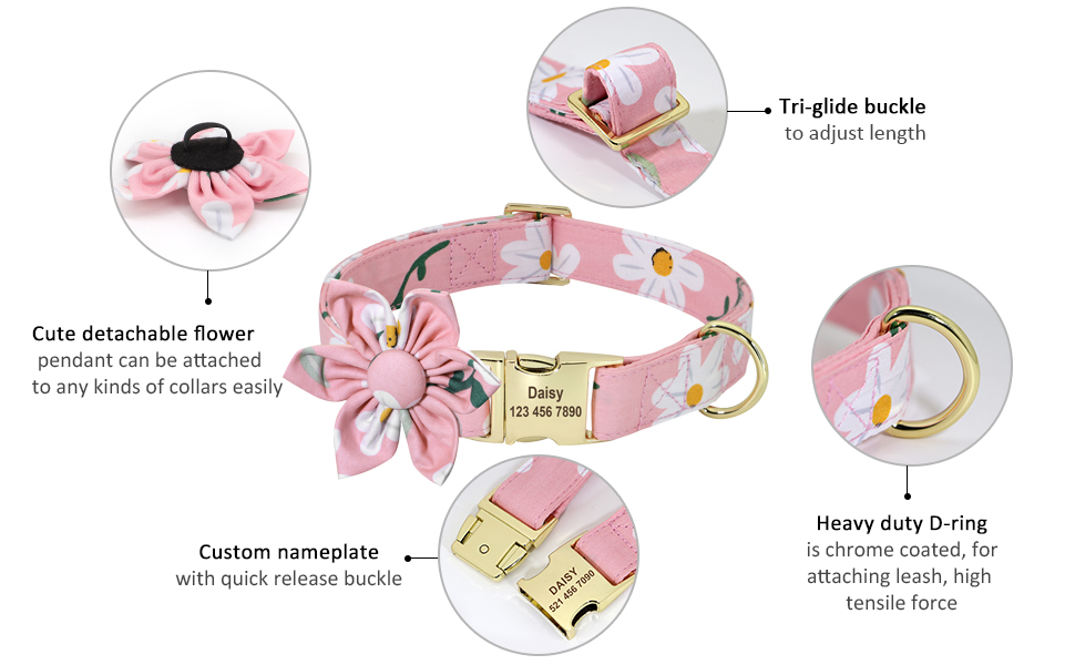 personalized dog collar for girl dogs