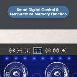 Temperature Memory Function
