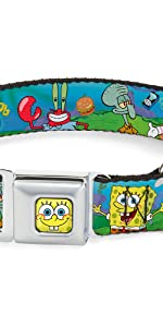 SpongeBob Dog Collar