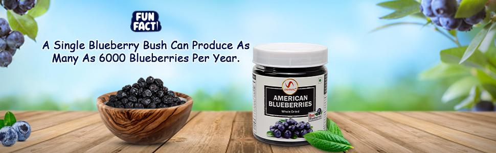 American Dried Blueberries