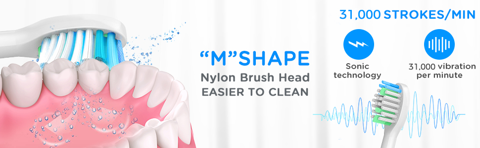 Mshape toothbrush head