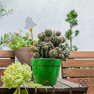 ASTI Self-Watering Pots