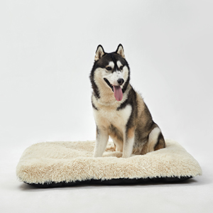 kennel mat 42 inch washable dog crate pad odor control dog crate pad shred proof dog bed