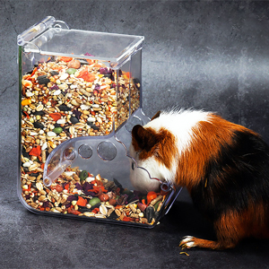 large-capacity feeder