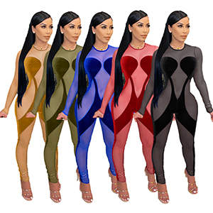 sheer jumpsuit for women