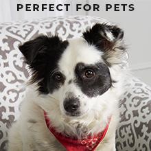 Pet Friendly Slip Cover
