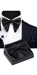 Paisley Big Bow Tie
