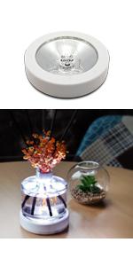 Cocodor LED Mood Lamp