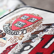 Harvard Embroidered Pillow