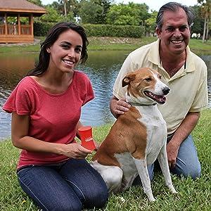 ShakeTrainer, Dog training, Dog obedience, Humane