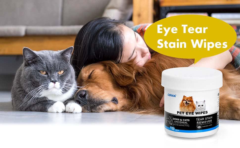 dog eye wipes for white dog