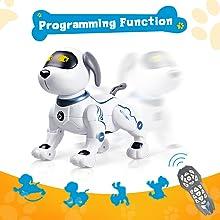 Programming Function