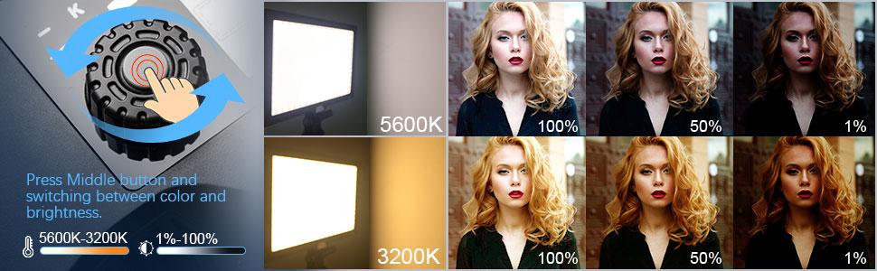 Bi-color camera video light