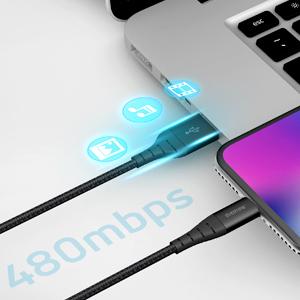mini 6s ipod usb c pro 10 foot lightning ft 11 plus xs certified lighting max cords lightening power