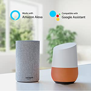 smart plug that works with alexa
