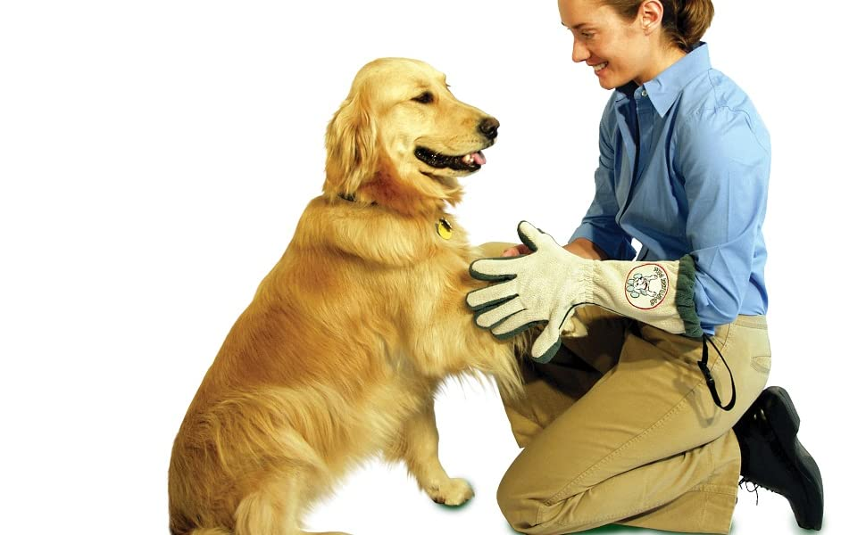 spotless paw dog paw cleaning glove, clean muddy dog paws