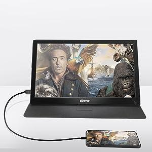 portable computer monitor