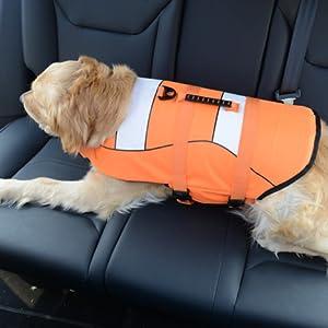 dog swimming vest