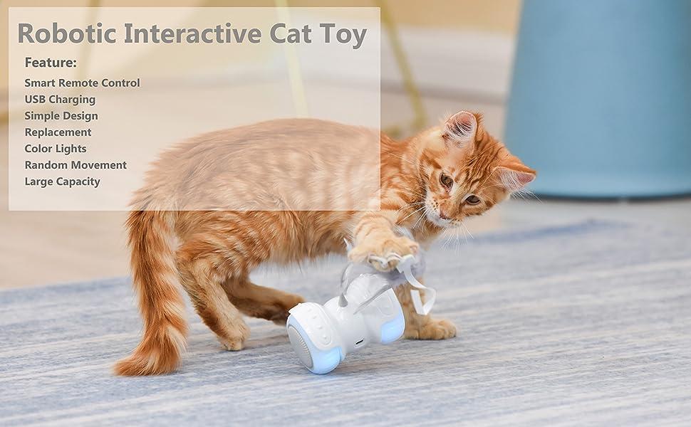 Robotic Interactive Cat Toy