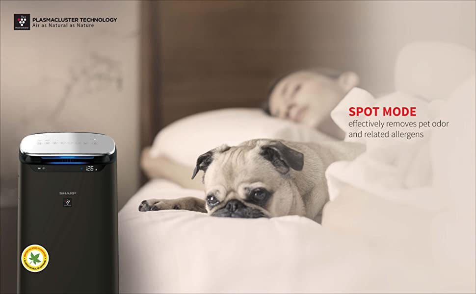 sharp j80 expensive air purifier sharp high end air purifier