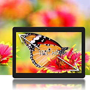Vibrant Picture of Butterfly on the Innovate 10 HD Display