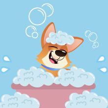 Shower your dog