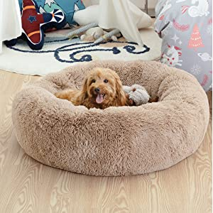 two size available dog bed