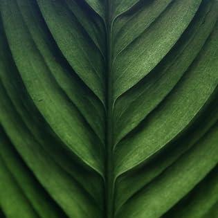 organics buddy aveda biolage andalou kevin art-naturals or-ganix purology jason all d wow products